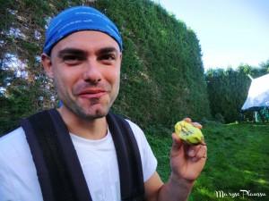 Travailler dans les kiwis en NZ