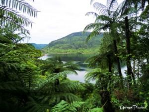 autour de Rotorua