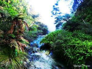 riviere Waimangu