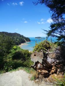 Abel Tasman treks côtiers
