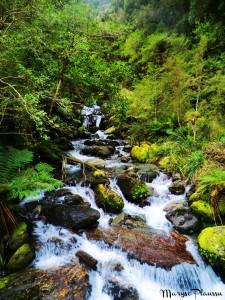 Copland Track - 85 rivières