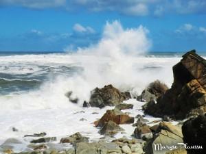 treks côtiers - Heaphy Track